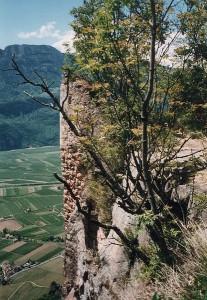 415px-Burgruine_Greifenstein_1997